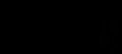 Logo_RSPKarneval_250px